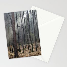 Magical winter light Stationery Cards