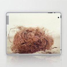 wool at beach Laptop & iPad Skin