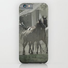 Arabian horses iPhone Case