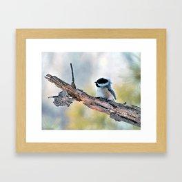 Chickadee Against the Wind Framed Art Print