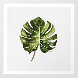 Monstera Broad Leaf - Single Art Print