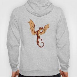 Here be dragons Hoody