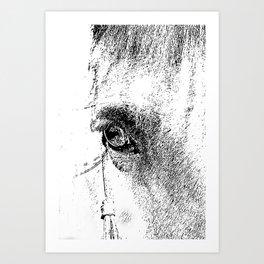 Eye of Horse Art Print