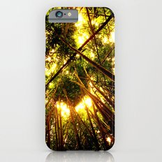 Bamboo Forest iPhone 6s Slim Case