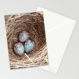 Birds Nest Stationery Cards