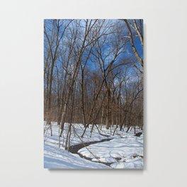 Frozen Freedom- vertical Metal Print