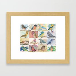 Birds Collection in Watercolor Pencils Framed Art Print