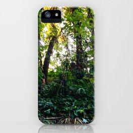 I'd follow you into the sun iPhone Case