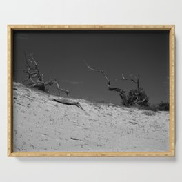 Sand Dunes on Cumberland Island Serving Tray