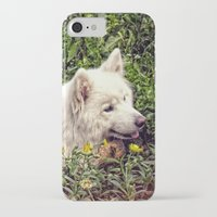 fairytale iPhone & iPod Cases featuring Fairytale by MG-Studio
