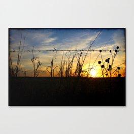 Free Show Canvas Print