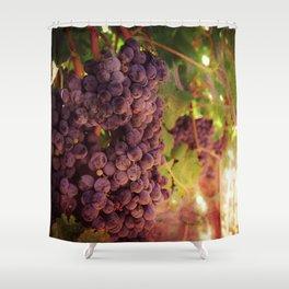 Vineyard Vines Shower Curtain