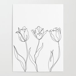 Botanical illustration line drawing - Three Tulips Poster
