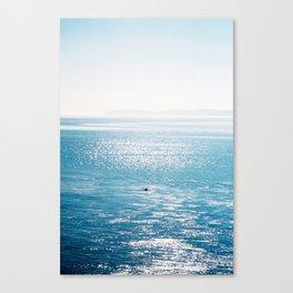 Thinking About Stuff Canvas Print