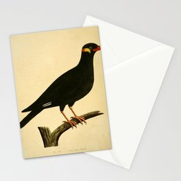 Vintage Print - A Natural History of Birds (1730s) - Myna Bird from the East Indies Stationery Cards
