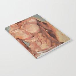 Brief 3 Notebook