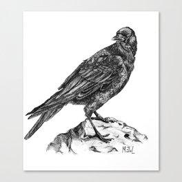 Raven Part 3.  Canvas Print