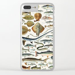 Vintage Illustration Fish Chart Clear iPhone Case