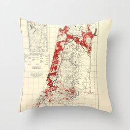 Map of Palestine Index to Villages & Settlements 1940's Throw Pillow