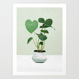 Plant 3 Art Print