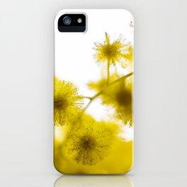 Acacia Flower  iPhone Case