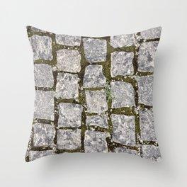 Stone Path Texture Throw Pillow