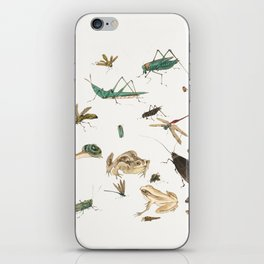 Insects, frogs and a snail iPhone Skin