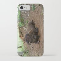 buffalo iPhone & iPod Cases featuring Buffalo by FortuneArt&Photography