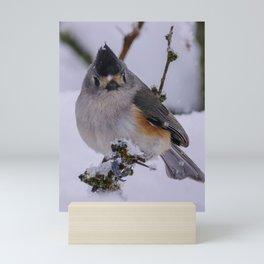 Moody Bird Mini Art Print