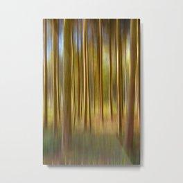 Concept nature : Magic woods Metal Print