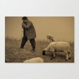 Herder   Canvas Print
