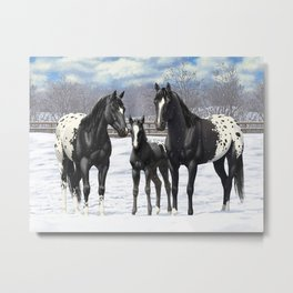 Black Appaloosa Horses In Winter Snow Metal Print