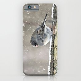 Once Upon a Snow Bird: Junco iPhone Case