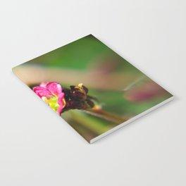 Tiny pink Flower Notebook