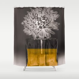 IL NOBLE Shower Curtain
