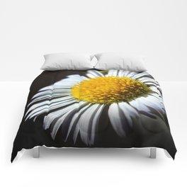Facing The Sun Comforters