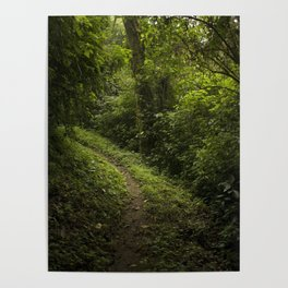 Green path Poster