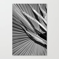 palm Canvas Prints featuring Palm by Christoffer Eriksson