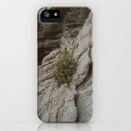 Mexico Mountainside II iPhone Case