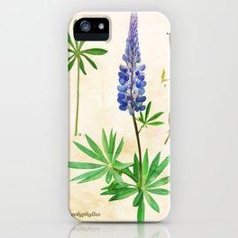 Lupinus Polyphyllus iPhone Case