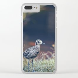 Kaneohe Bird Clear iPhone Case