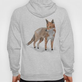 Fox in watercolors Hoody