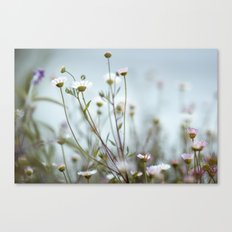 she's got a new spell Canvas Print