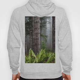 Pacfic Northwest Mountain Forest IV - 109/365 Landscape Photography Hoody