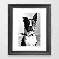 Bobo Framed Art Print