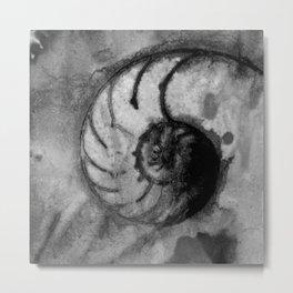 Sea Wish 1E by Kathy Morton Stanion Metal Print
