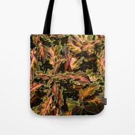 Coleus Foliage Tote Bag