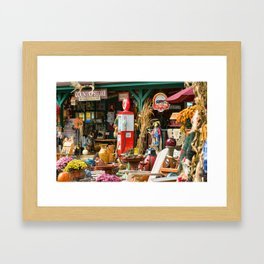 Country Store Framed Art Print