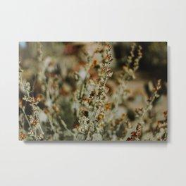 Red Wildflowers Metal Print