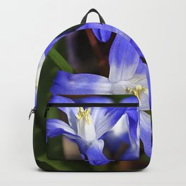 Early Spring Blue - Chionodoxa Backpack